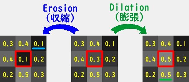 11_15_morphology1